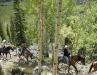 Horseback Riding through Aspens on Boulder Mt.