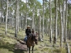 Boulder Bedroll and Breakfast Horse Trip