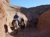 Canyon Horse Tour 2